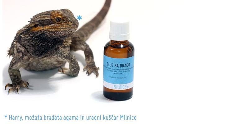 https://www.milnica.si/blog/negovalno-olje-za-brado-brke/